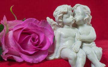 Jacky Newcomb: Gli Angeli dell'Amore